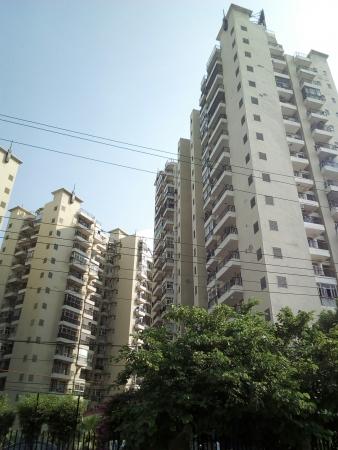 Prateek Fedora, Sector 61, Noida - Building