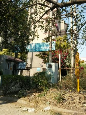 3 BHK Apartment for Rent in Ganpati Apartment - Exterior View