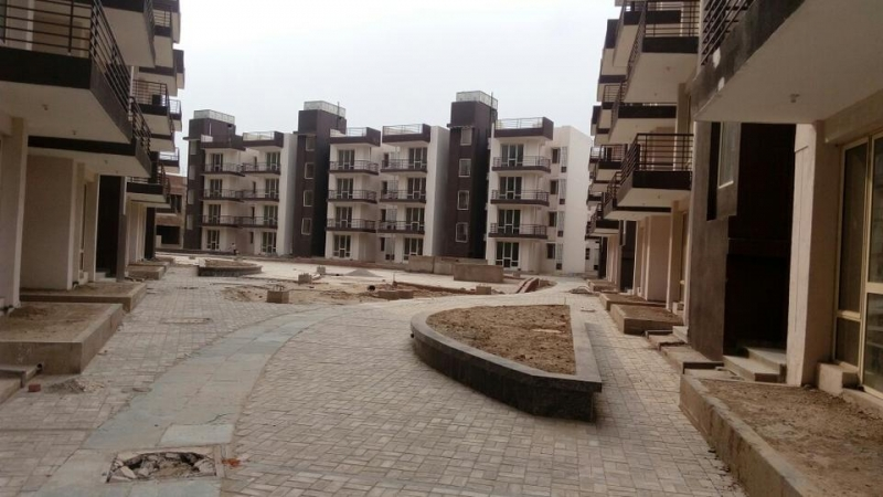 3 BHK Apartment for Rent in Dhingra California Country - Exterior View