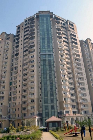 3 BHK Apartment for Sale in Amrapali Sapphire - Exterior View