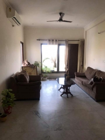 3 BHK Apartment for Rent in DLF Carlton Estate - Living Room