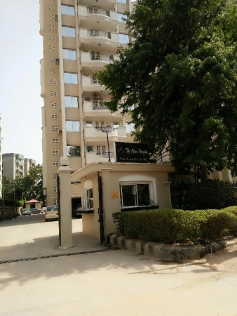 3 BHK Apartment for Rent in Forte Olive Heights - Exterior View