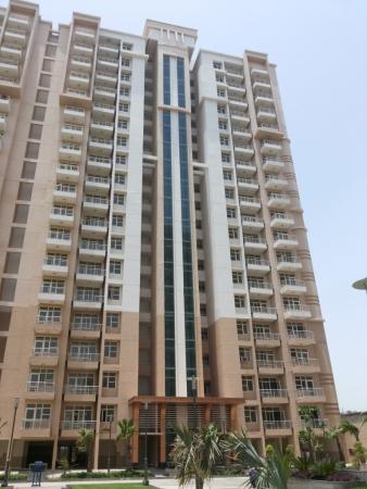 Omaxe Hills, Sector 43, Faridabad - Building