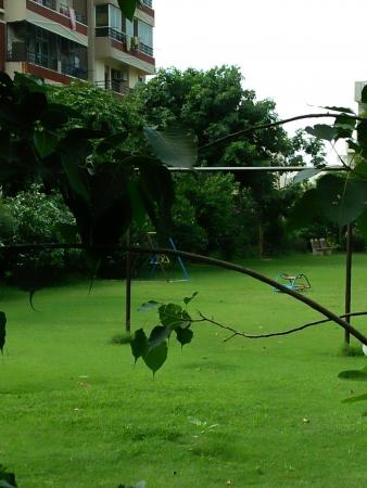 Progressive Apartments Sector 55 Gurgaon