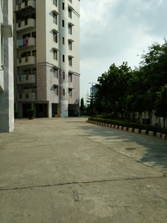 Oasis Apartment Sector 55 Gurgaon