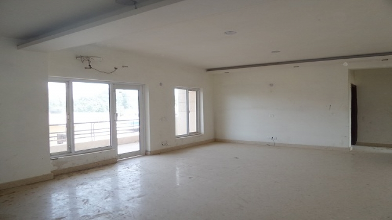 2 BHK Apartment for Rent in Aggarwal Homes - Living Room