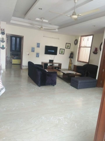 3 BHK Apartment for Rent in DLF Wellington Estate - Living Room